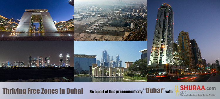 Dubai Free Zone Development and Bids to Attract Foreign Investors