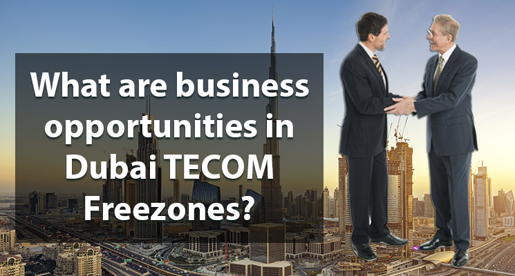 What are business opportunities in Dubai TECOM Freezones?