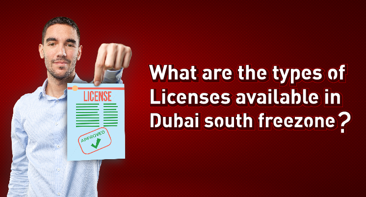 What are the types of licenses available in Dubai South freezone?