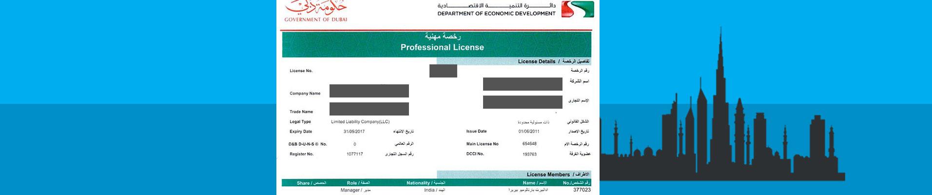 Professional Trade License in Dubai & Professional Licenses